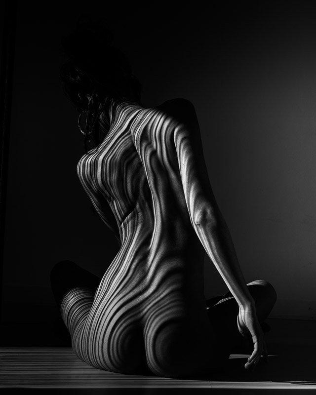 sitting stripes 1 fine art print