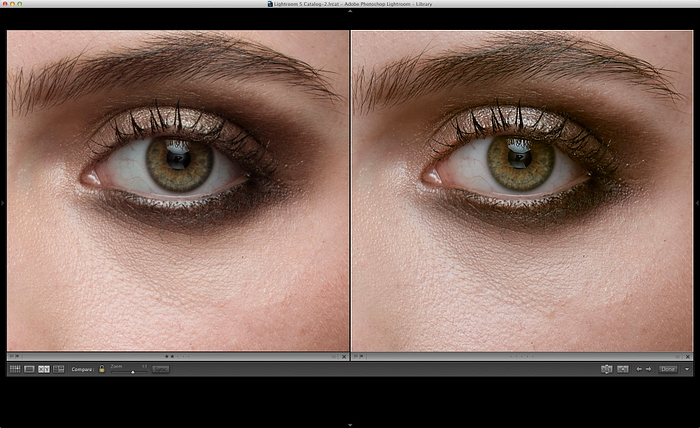 LR vs C1 at 100% view Adobe Lightroom vs. Phase One Capture One Review